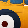 Vintage Airplane Abstract Design Poster by Carol Leigh