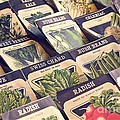 Vintage Seed Packages Print by Edward Fielding