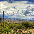 Visions of Arizona  Print by Saija  Lehtonen