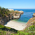 Vista of China Cove at Point Lobos State Reserve California Poster by Artist and Photographer Laura Wrede