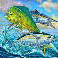 Wahoo Mahi Mahi And Tuna Poster by Terry  Fox