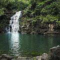 Waimea Falls by Charmian Vistaunet