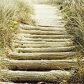 Walkway to beach Print by Les Cunliffe