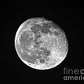 Waning Pink Moon Print by Al Powell Photography USA