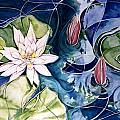 Water Lily Pond Print by Elaine Wilson