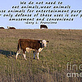 We Do Not Need To Eat Animals Print by Janice Rae Pariza
