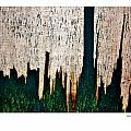 Weathered Abstract 5 Poster by Xoanxo Cespon