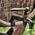 Weathered tap and barrel Print by Paul Ward