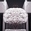 Welcome Tree Infrared Print by Adam Romanowicz
