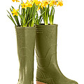 Wellington Boots Poster by Christopher and Amanda Elwell