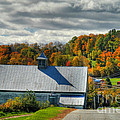 Western Maine Barn Poster by Alana Ranney