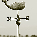 Whale Weathervane In Sepia Poster by Ben and Raisa Gertsberg