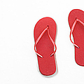 Where On Earth Is Spring - My Red Flip Flops Are Waiting Poster by Andee Design