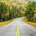 Where this Road will Take You - Talimena Scenic Highway - Oklahoma - Arkansas Print by Silvio Ligutti