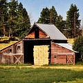 Whitefish Barn Print by Marty Koch