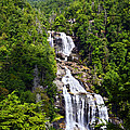 Whitewater Falls Poster by Susan Leggett