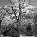 Wilson Lick Ranger Station Print by Debra and Dave Vanderlaan