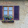 Window with Potted Plants of Rural Tuscany Poster by David Letts