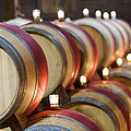 Wine Barrels Print by Francesco Emanuele Carucci