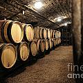 Wine barrels in a cellar. Cote d'Or. Burgundy. France. Europe Poster by BERNARD JAUBERT