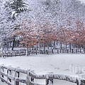 Winter Fenced In Print by Benanne Stiens