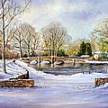 winter in ashford Print by Andrew Read