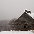 Winter Maine Barn Poster by Alana Ranney