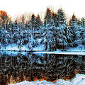 Winter Pond at Shady Grove Print by Judy Duncan