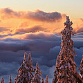 Winter sunset Poster by Pierre Leclerc Photography