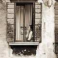Woman gazing out of a window contemplating Print by Stephen Spiller