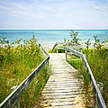 Wooden walkway over dunes at beach Poster by Elena Elisseeva