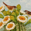 Wrens on Top of Tucson Print by Summer Celeste