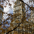 Wrigley Building in Autumn  Poster by Leslie Leda