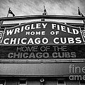 Wrigley Field Sign in Black and White Poster by Paul Velgos