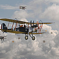 WW1 RE8 Aircraft Print by Pat Speirs