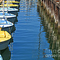 Yellow and Blue Sailboats from the book MY OCEAN Print by Artist and Photographer Laura Wrede