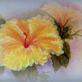 Yellow Hibiscus Print by Kay Novy