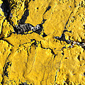 Yellow Line Abstract Print by Luke Moore
