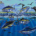 Yellowfin run Off002 Print by Carey Chen