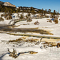 Yellowstone Hot Spring Print by Sue Smith