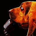 You Ain't Nothing But A Hound Dog - Dark - Electric Print by Wingsdomain Art and Photography