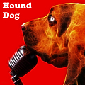 You Ain't Nothing But A Hound Dog - Red - Electric - With Text Poster by Wingsdomain Art and Photography