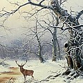 A Stag in a Wooded Landscape  Poster by Nils Hans Christiansen