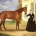 Portrait of a lady with her horse Print by English School