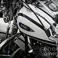 1 - Harley Davidson Series  Print by Lainie Wrightson