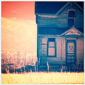 Abandoned House Poster by Jill Battaglia