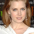 Amy Adams At Arrivals For Julie & Julia Poster by Everett