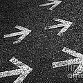Arrows on Asphalt Print by Carlos Caetano