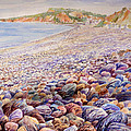 Budleigh Salterton Beach Poster by Merv Scoble