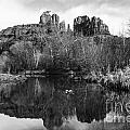 Cathedral Rock Reflections Landscape Print by Darcy Michaelchuk